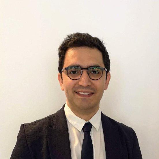 Seyedbehnam Hashemi