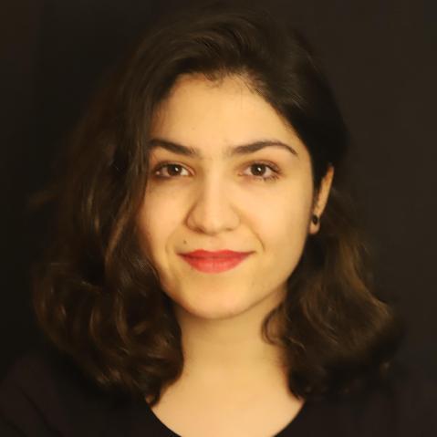 Bahareh Tajiani